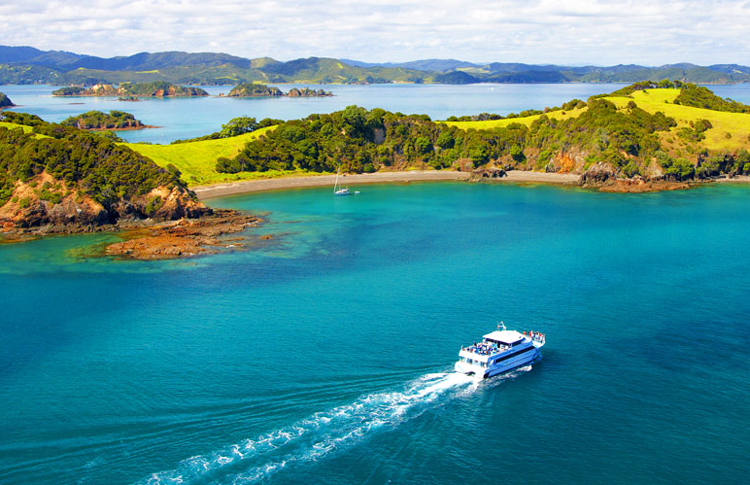 Bay of Islands Tour
