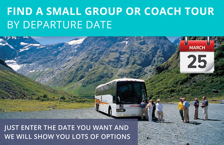 Which are the best New Zealand Coach Tours? | NZ Travel Blog