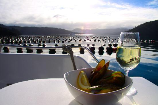 Marlborough Sounds Mussel Cruise