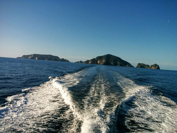 the view of the Poor Knights Islands as you leave by diving boat