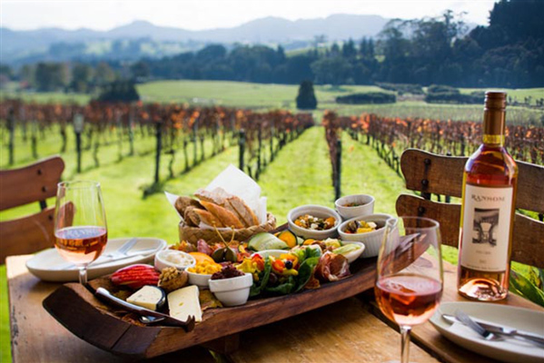 New Zealand Wine Regions & Tours | New Zealand Travel Blog