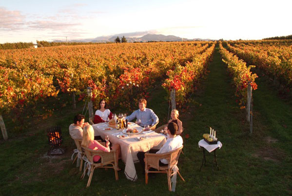 New-Zealand-Wine-Tour
