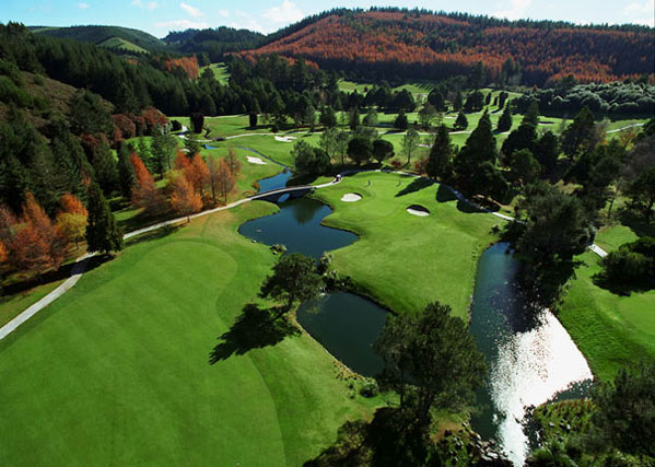 The views of Wairakei International golf course is a site to behold with its lakes and tree covered park.