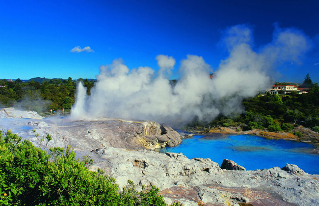 Geyser erupts in the geothermal town of Rotorua.