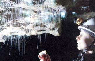 Waitomo Caves Spellbound
