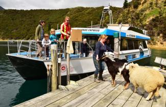 Pelorus Mailboat Cruise