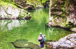 New Zealand Fly Fishing Tour