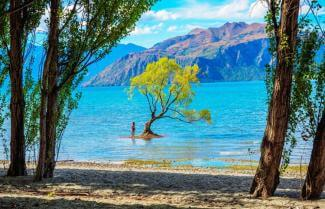 Wanaka Leisure