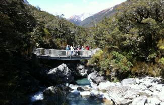 Arthur's Pass National Park Guided Hike