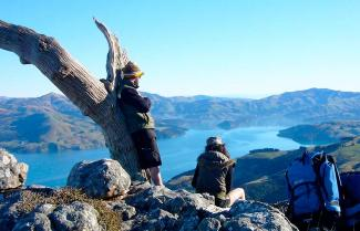 The Banks Peninsula Freedom Walk
