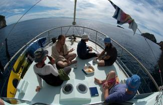Liveaboard in the Poor Knights Marine Reserve