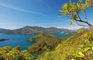 Queen Charlotte Track, Freedom Walk