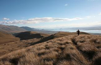 Tekapo High Country Track