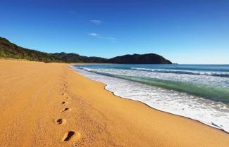 Foot Prints on Abel Tasman