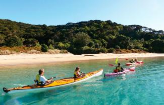 Kayaking bay of Islands