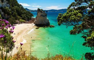 Coromandel - Beautiful Deserted Beach