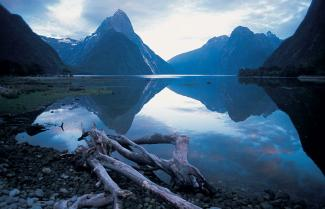 Mighty Milford Sound