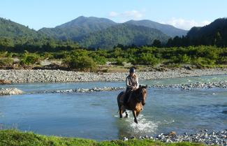 New Zealand West Coast Horse Riding Tour