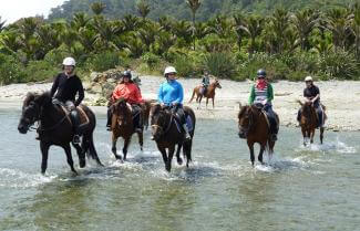 Guided Small Group Horse Riding, New Zealand