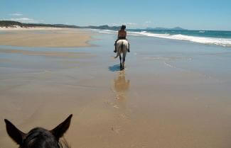 Horse Riding 5 Day Warrior Trail, New Zealand Tour