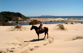 New Zealand Horse Trekking, 5 Day Guided Tour
