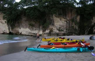 Guided Kayaking Tour in the Bay of Islands