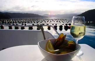 Marlborough Sounds wine and Mussel Cruise