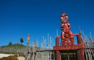 Hawkes Bay Private Cultural Experience