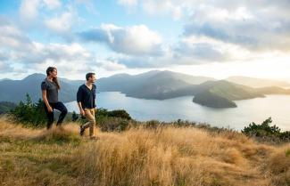 Hikers on the Queen Charlotte Track