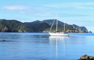 Quiet Bays in the Bay of Islands