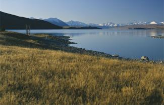 Walking along Lake Tekapo on the High Country Trek