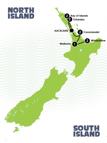 10 Day Self Drive New Zealand Diving Adventure