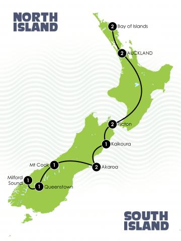 New Zealand Whale Dolphin Tour