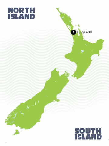 Large Auckland Map