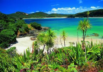 New Zealand's Best Beaches in Northland