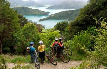 Mountain Biking the Queen Charlotte Track