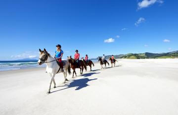 Horse Riding on the Beach, Pakiri