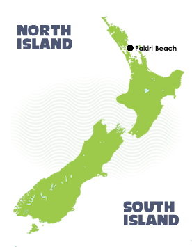 5 Day Warrior Trail at Pakiri Beach Map