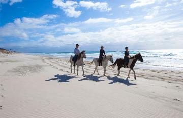 Horse Riding Overnight Safari Ride, New Zealand