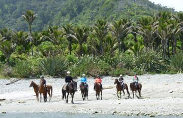 Punakaiki Horse Riding Tour, New Zealand