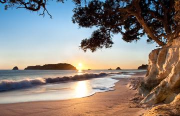 New Zealands Best Beaches: Coromandel