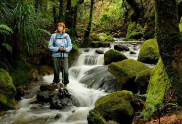 Best New Zealand Day Hikes – North Island